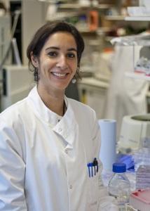 Dr Hind Hafsi