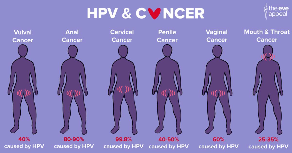 HPV FBTwitter asset